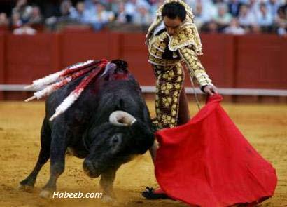 http://www.habeeb.com/images/matador.bullfight.11.jpg